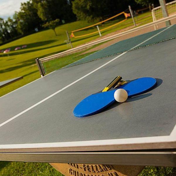 Ping Pong Parco La Quiete